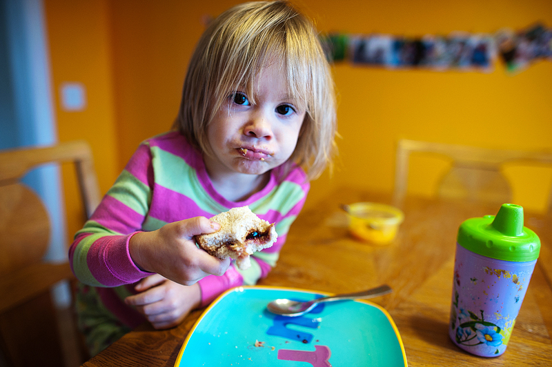 Toddler eating shark peanut butter sandwich.