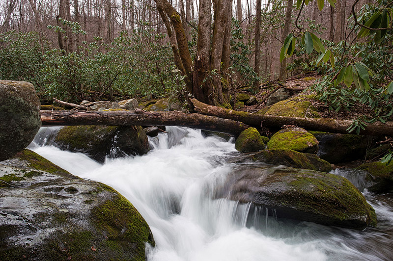 Water in creek at Great Smoky Mountain National Park in Tennessee.
