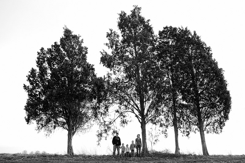 Family portrait by four cool trees in Indiana.