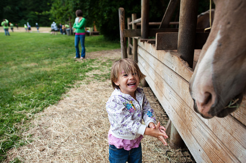 Toddler feeding a horse and laughing.