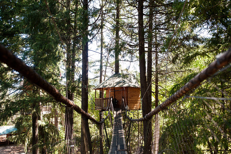 Swinging bridge to Pleasantree treehouse at Out N About Treesort.