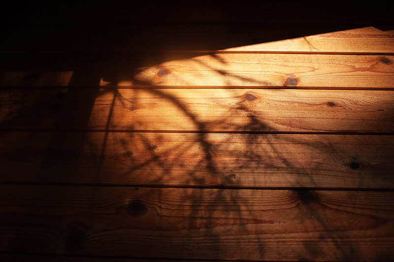 Shadows at sunset on a tree house at Out N About treehouses.