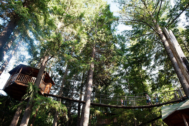 Pleasantree treehouse in Southern Oregon.
