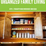 Simple Ideas for Organized Family Living – Snack Packs