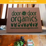 Simple Ideas for Healthy Family Living – Buy Organic Fruits and Veggies