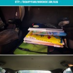 Simple Ideas for Happy Family Living – Reading in the Car