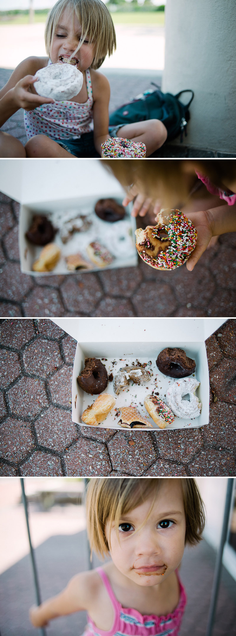 Donuts from the Donut Hole in Destin, Florida.