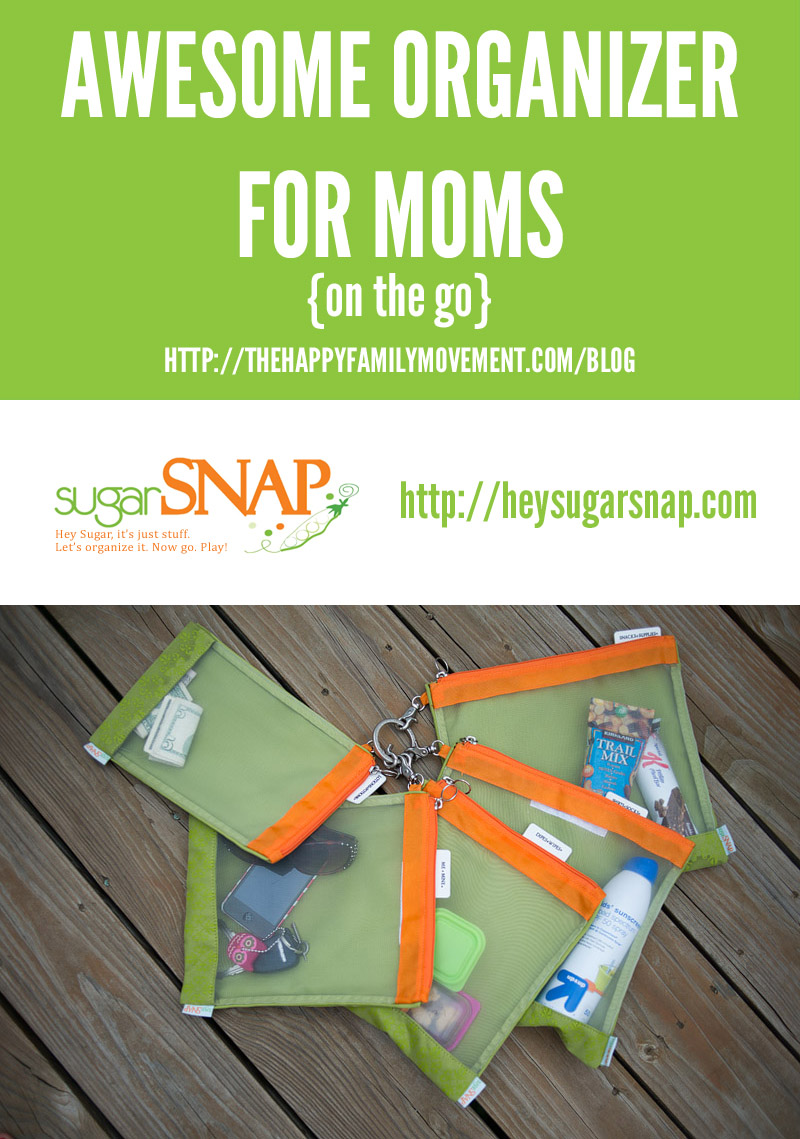 awesome organizer for moms on the go sugarsnap files
