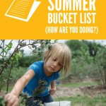 Blueberry Picking {summer bucket list}