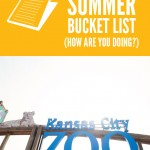 A Trip to the Zoo {summer bucket list}