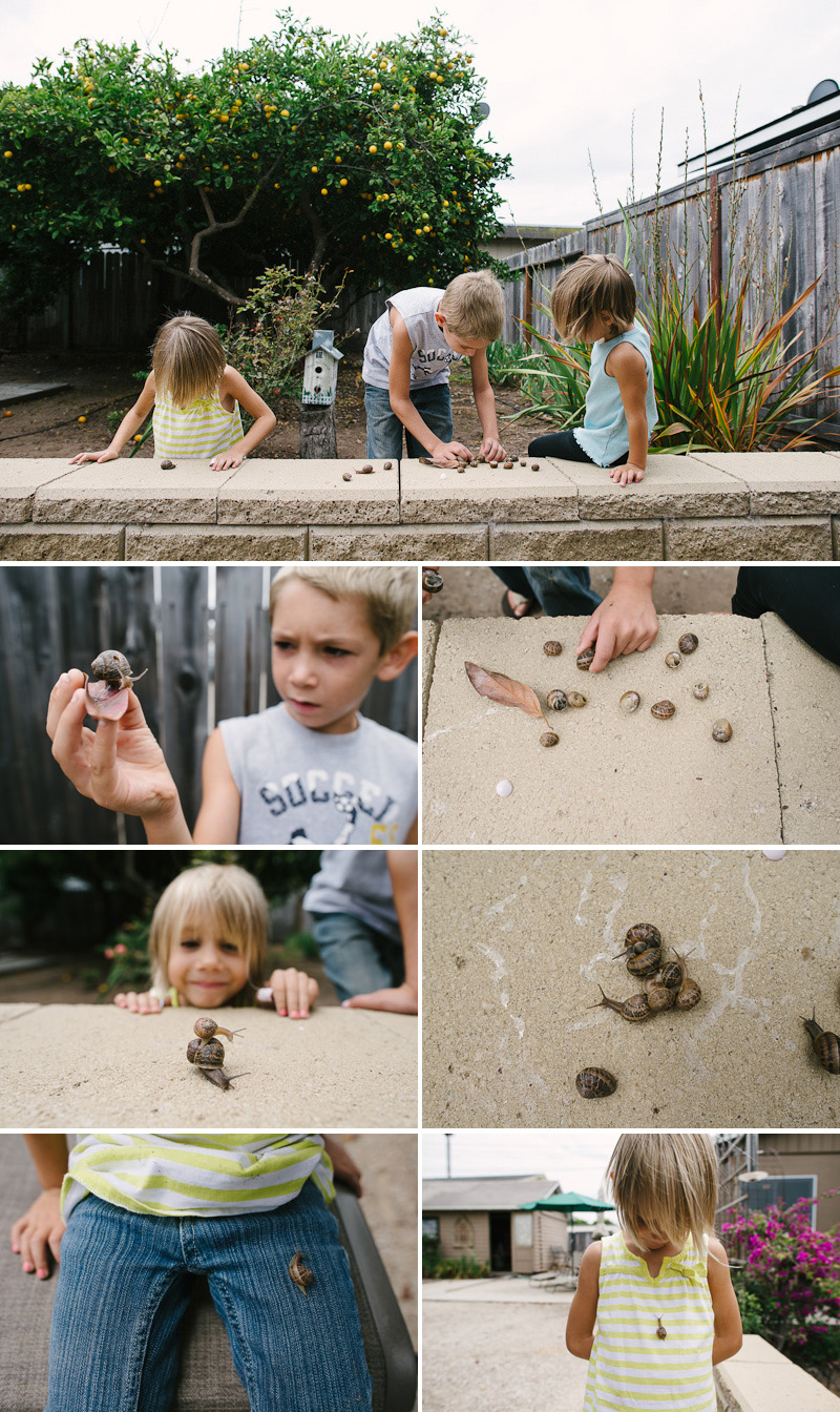kids playing with snails