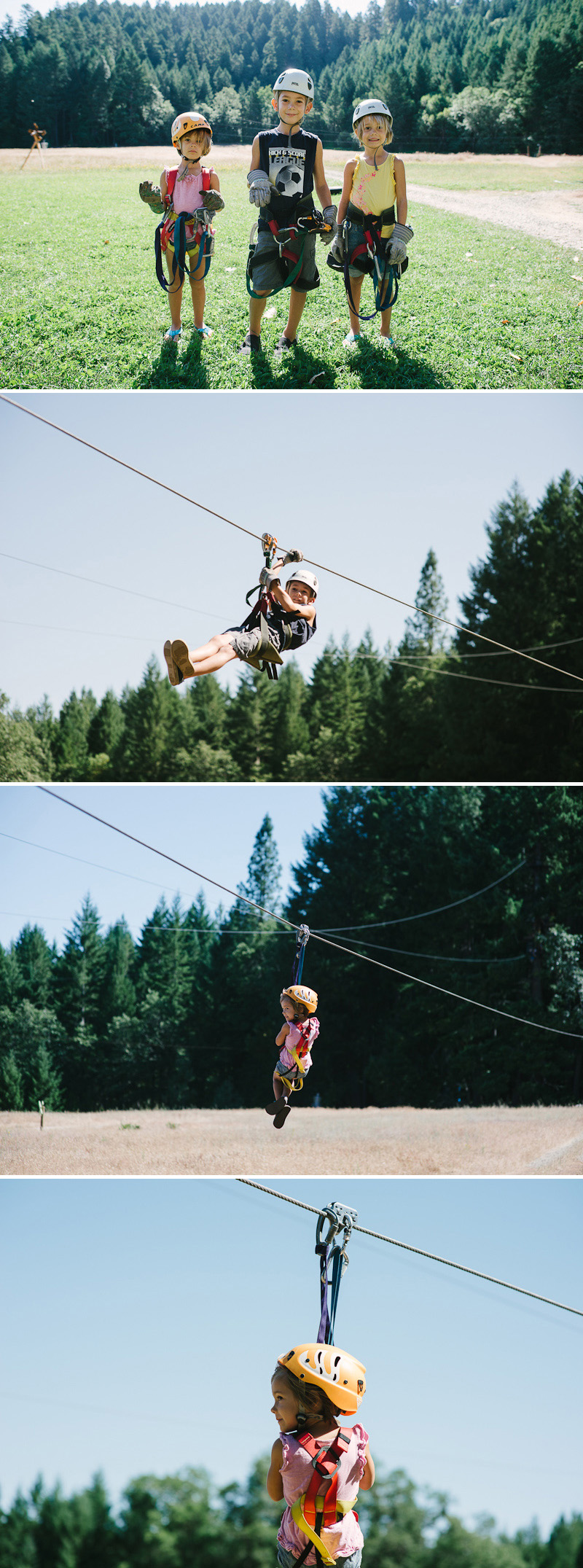 ziplines at out and about treehouses