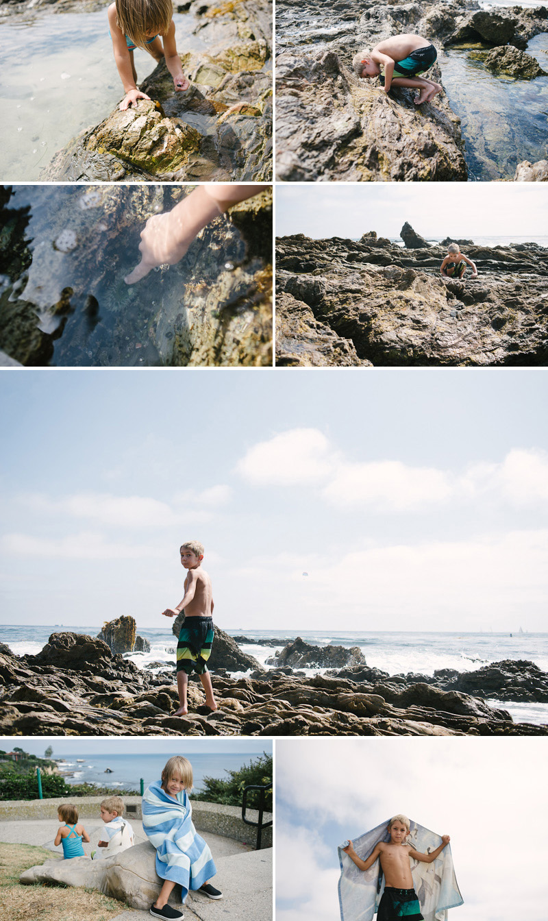 kids climbing on rocks and catching hermit crabs at corona del mar california