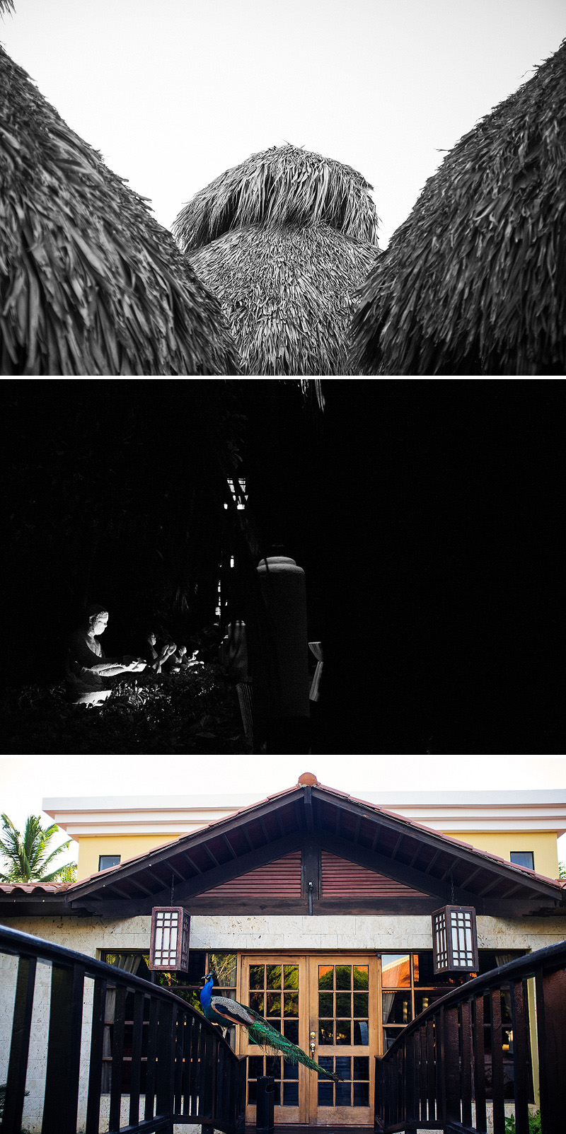 Sweet pictures from Puna Cana, Dominican Republic.