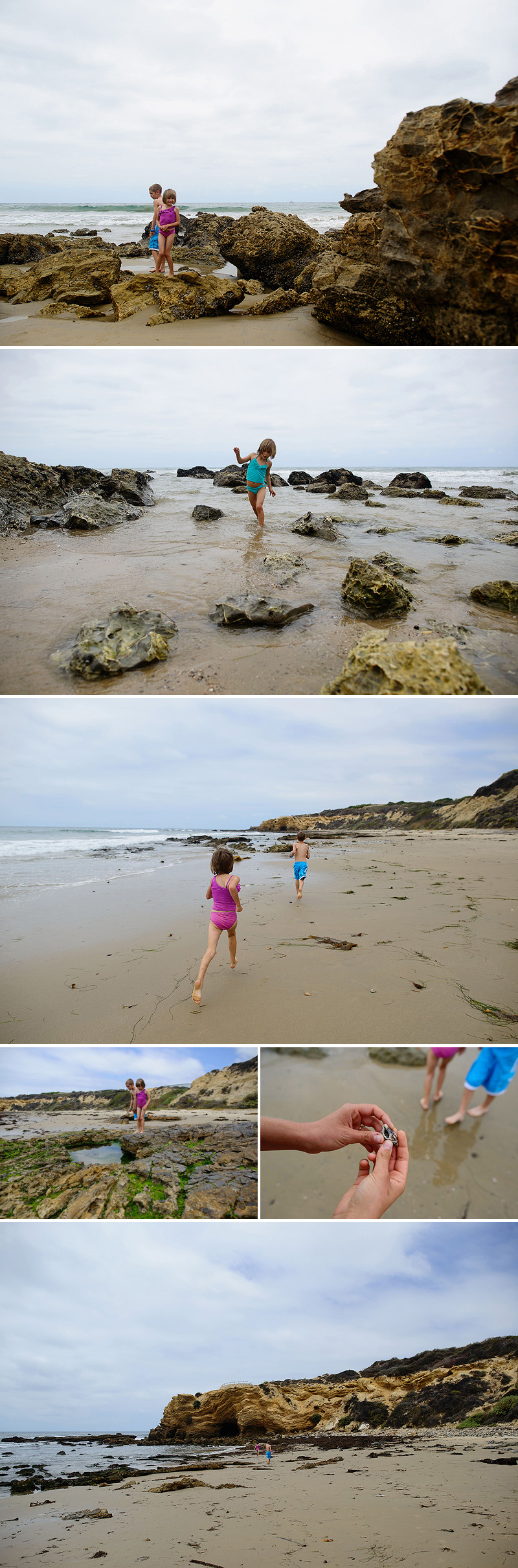 kids exploring tidepools crystal cove