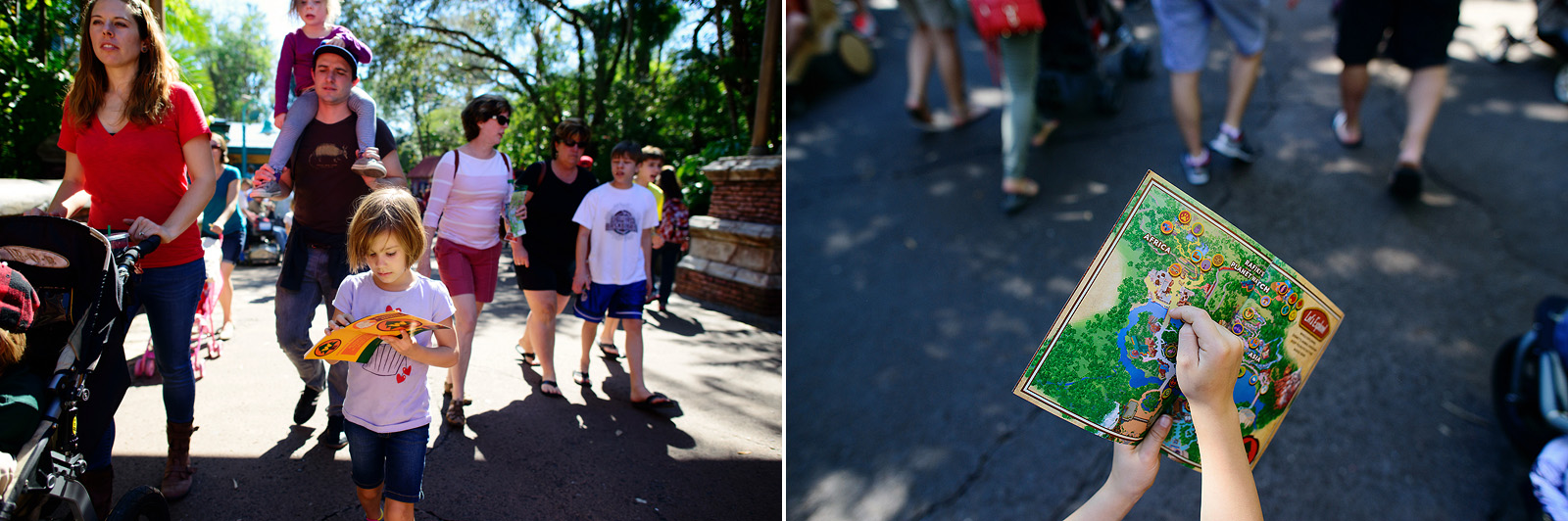 wilderness explorer badges at Animal Kingdom