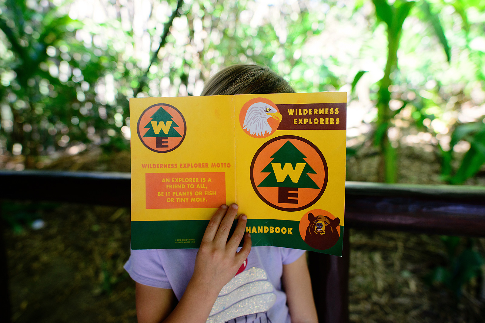 wilderness explorer handbook fun at animal kingdom