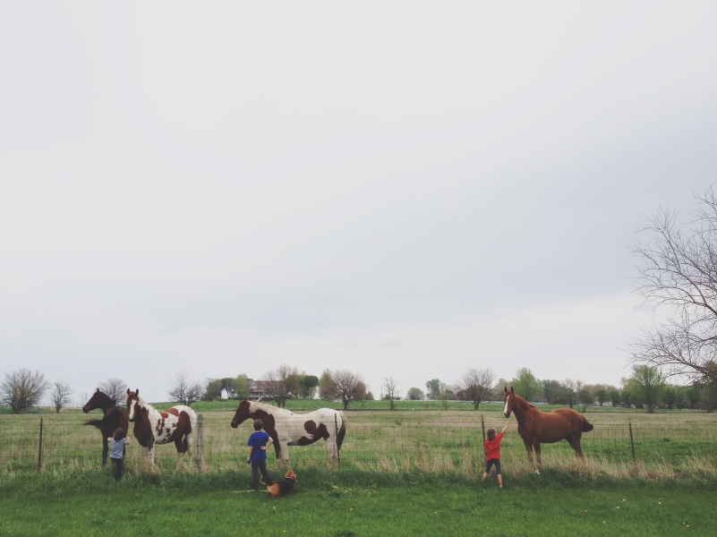 Kids and horses.
