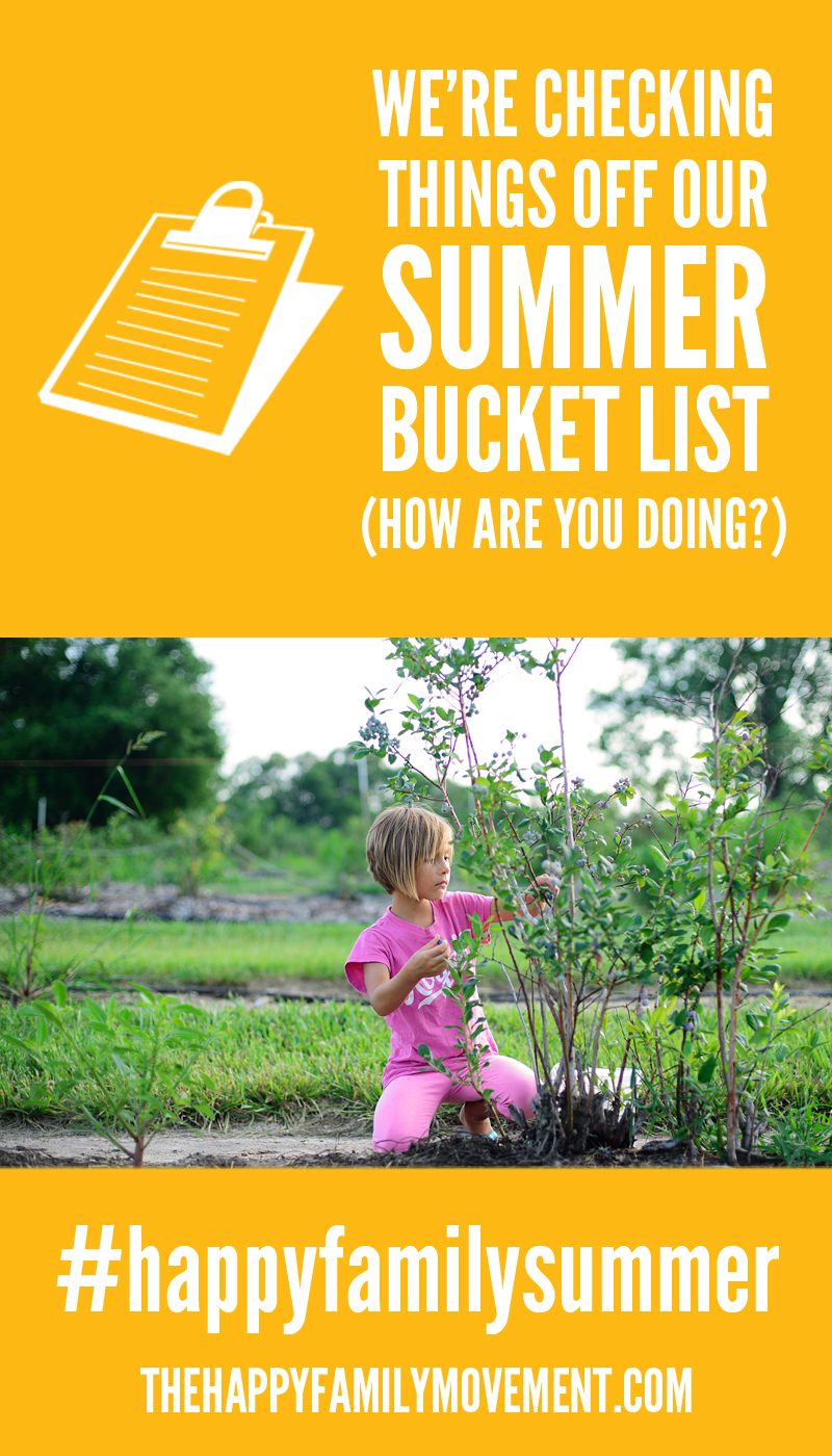 blueberry picking summer bucket list activity
