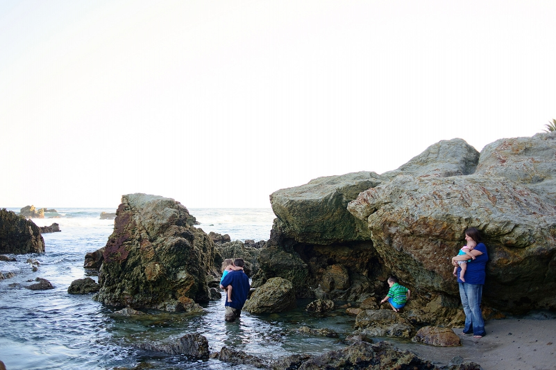 Tide pooling in laguna beach, california.